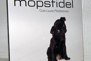 Mopsfidel