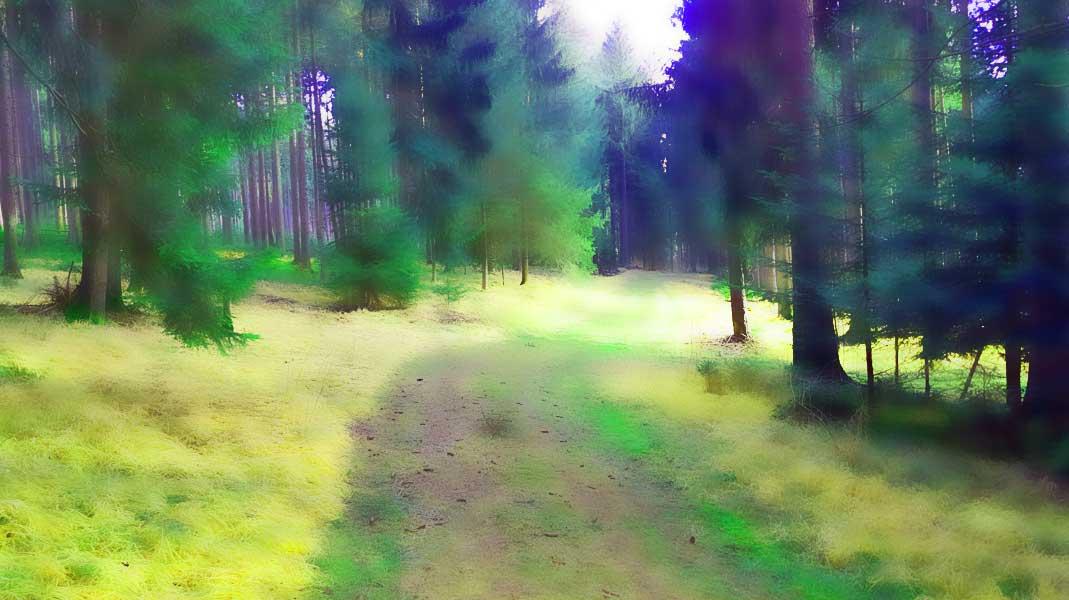 Waldinnergetic