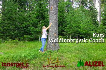 Waldinnergetic Coach