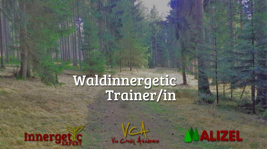 Waldinnergetic Coach/in